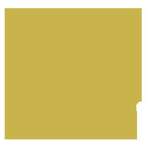 SIR Jane