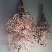 m o r n i n g l i g h t 🌿 #home #morning #driedflowers #morninglight #flowers #homesweethome #homedecoration