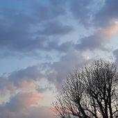 Ciel d'espoir ♡ . . #sky #sunset #pastel #nature #spring #evening #hope